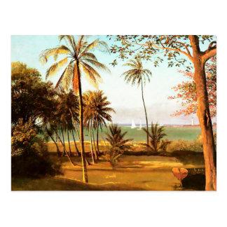 Florida Scene by Albert Bierstadt Postcard