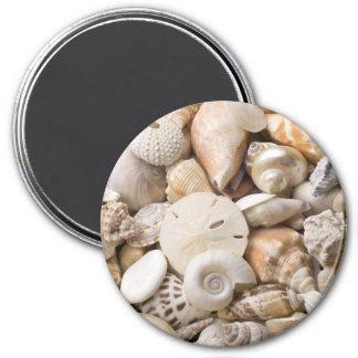 Florida Sea Shell Background - Beach Shells Custom 7.5 Cm Round Magnet
