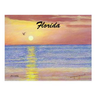 """FLORIDA SEAGULL POSTCARD"
