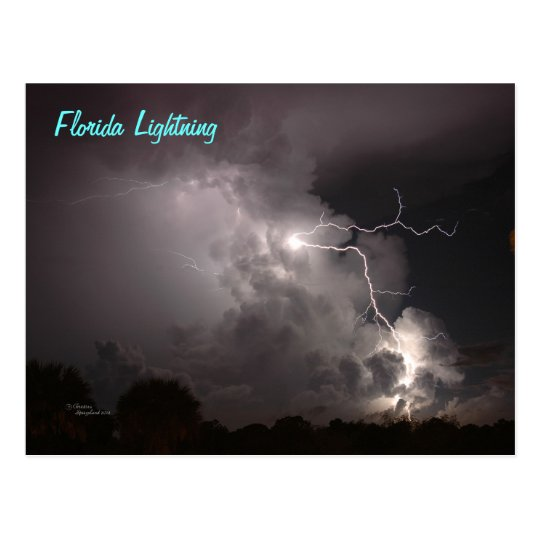 Florida Storm Lightning Postcard