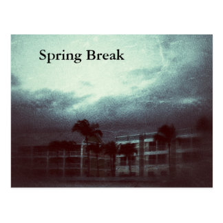 Florida Storm Spring Break Postcard
