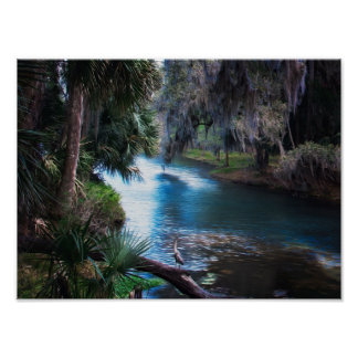 Florida Tropical River Paradise Poster