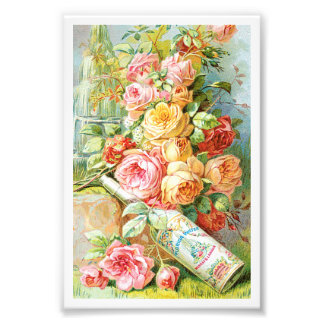 Florida Water Cologne with Cabbage Roses Photo Print