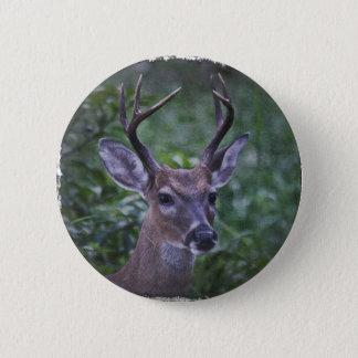 Florida Whitetailed Buck 6 Cm Round Badge