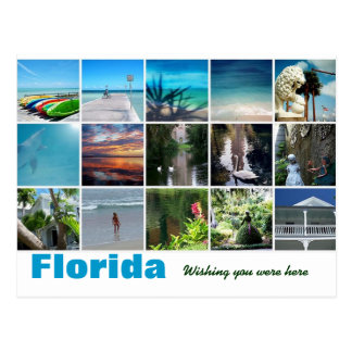 Florida Wishing you were here post card photograph