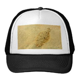 Flounder Hats