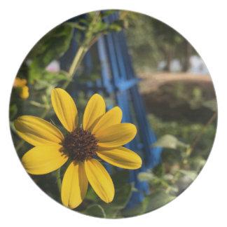 flower1.jpg party plates