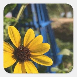 flower1.jpg square sticker