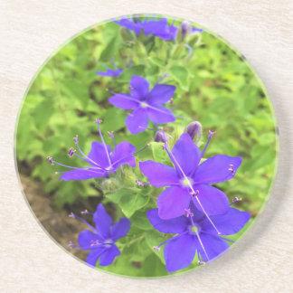 flower6.JPG Coasters