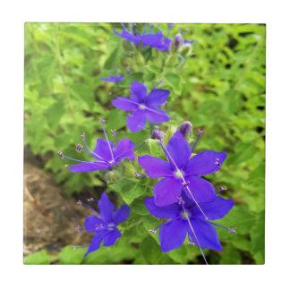 flower6.JPG Small Square Tile