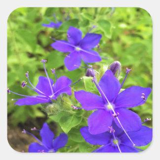 flower6.JPG Square Sticker