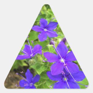 flower6.JPG Triangle Sticker