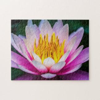 Flower 011 Waterlily Digital Art - Photo Puzzle
