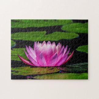 Flower 029 Waterlily Digital Art - Photo Puzzle