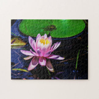 Flower 035 Waterlily Digital Art - Photo Puzzle