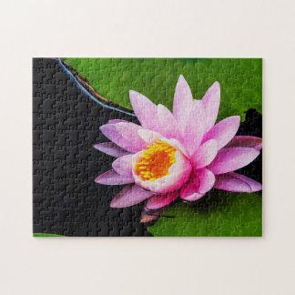 Flower 040 Waterlily Digital Art - Photo Puzzle