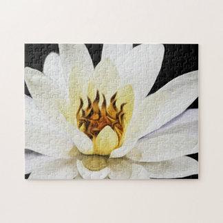 Flower 054 Waterlily Digital Art - Photo Puzzle