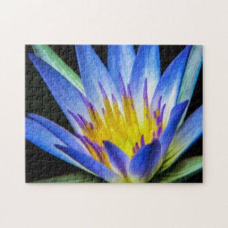 Flower 056 Waterlily Digital Art - Photo Puzzle
