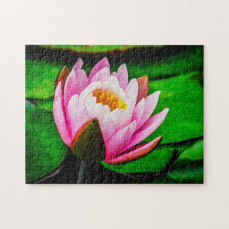 Flower 062 Waterlily Digital Art - Photo Puzzle