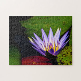 Flower 066 Waterlily Digital Art Jigsaw Puzzle