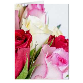 flower-316621 flower flowers rose love red pink ro greeting card