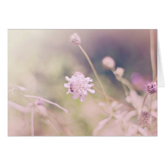 Flower and Bee Pastel Photograph Greeting Card