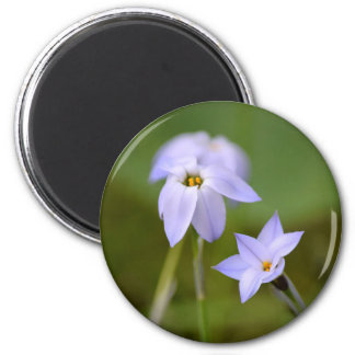 Flower and Blooms Magnet