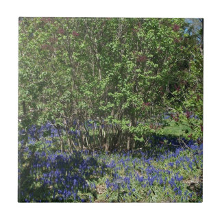 Flower and Nature Landscape Small Square Tile