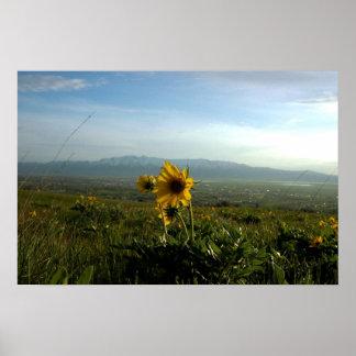Flower and Wellsville mountain Range Poster