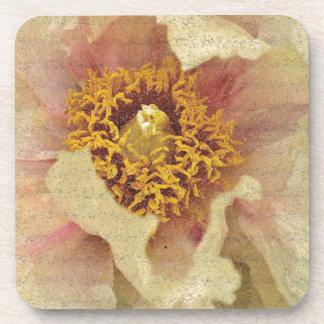 Flower Beauty Beverage Coasters