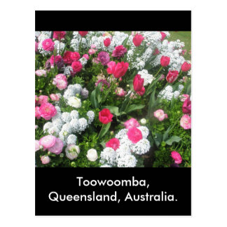 Flower Bed Toowoomba Postcard