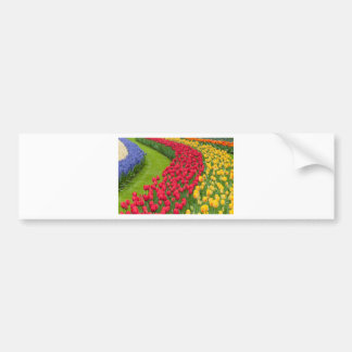 Flower beds of multicolored tulips bumper sticker
