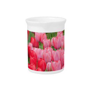 Flower beds of red and pink tulips pitcher