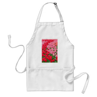 Flower beds of red and pink tulips standard apron