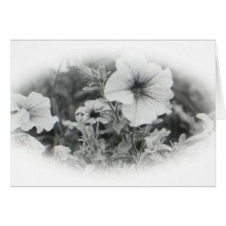 Flower - Blank card