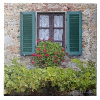 Flower box on window ceramic tile