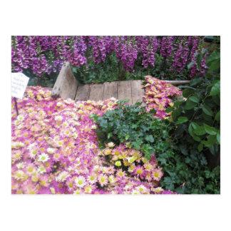 FLOWER Butterfly Garden Vegas Elegant Colorful gif Post Card