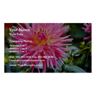 Flower close-up flowers business cards