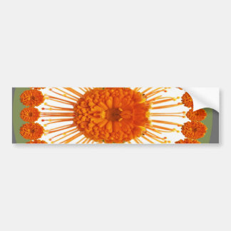 FLOWER Collection Collage - Love n Romance Bumper Stickers