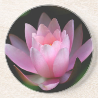 flower coster beverage coasters