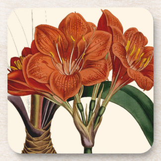 Flower Curtis Botanical Tote Coaster