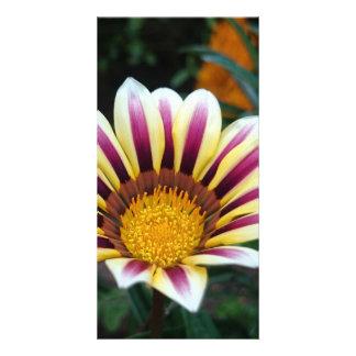 flower custom photo card