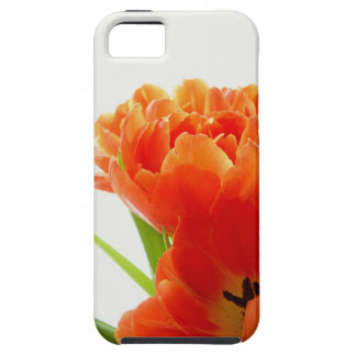 Flower Decor 38 Speck Cases iPhone 5 Covers