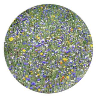 """""""Flower Field"""" Plate"""