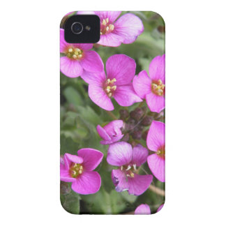 Flower fire iPhone 4 covers