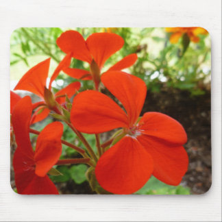 Flower garden box Mousepad