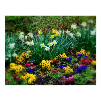 Flower Garden in Spring Postcard