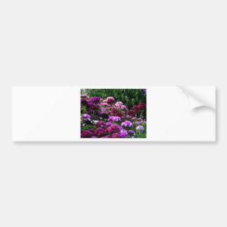 Flower Garden in summer Bumper Sticker