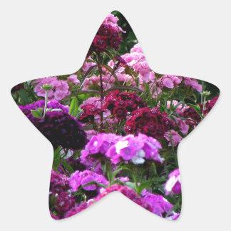Flower Garden in summer Star Sticker