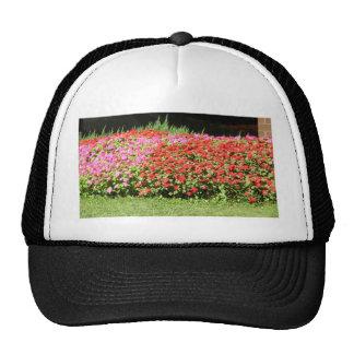 Flower Garden of Pink & Red Flowers Next to Grass Trucker Hat